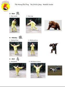 5 Animal-Exercises Sheet 2